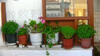 Naxos HOTEL | GALLERY FACILITIES ATRIUM
